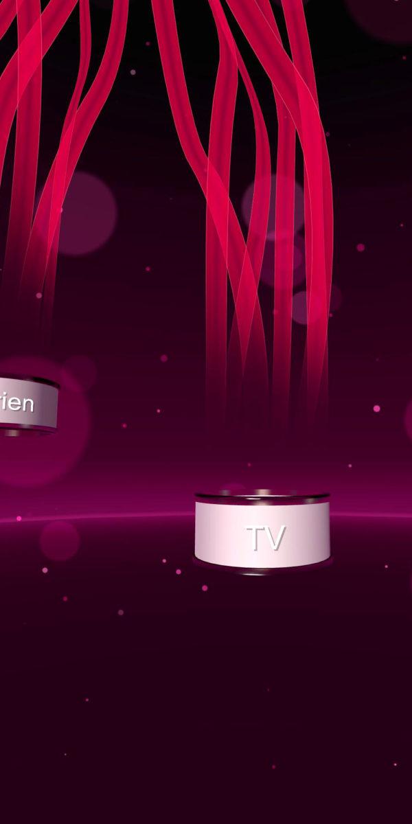 Telekom VR demonstrator